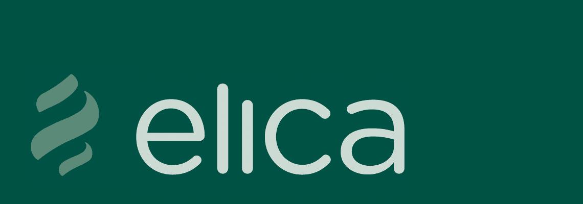 Группа компаний Elica Group