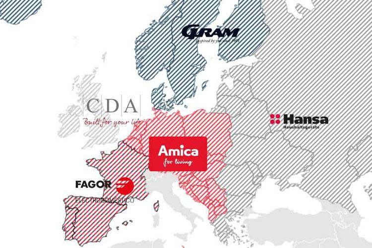 Рынки группы компаний Amica