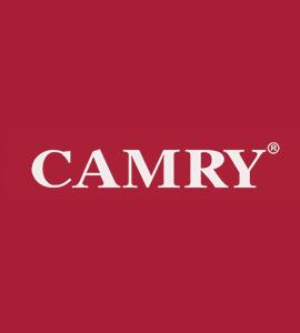 Логотип Camry