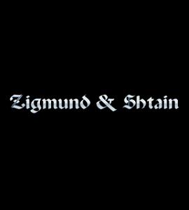 Логотип Zigmund&Shtain