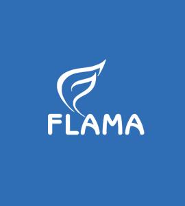 Логотип FLAMA