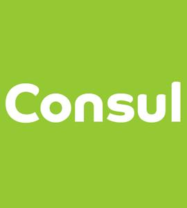 Логотип Consul