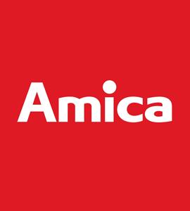 Логотип Amica
