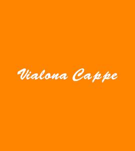 Логотип Vialona Cappe
