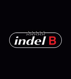Логотип IndelB