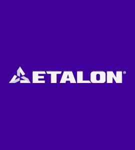 Логотип ETALON