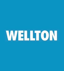 Логотип Wellton