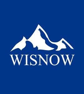 Логотип WISNOW