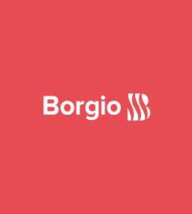 Логотип Borgio