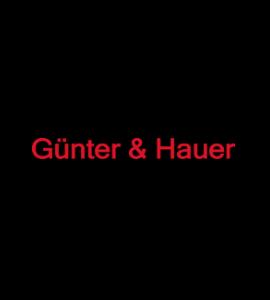 Логотип Gunter & Hauer