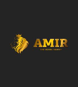 Логотип AMIR