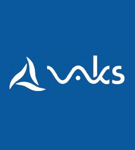 Логотип VAKS