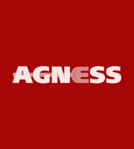 Логотип AGNESS