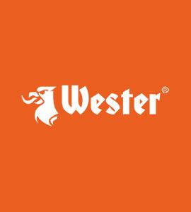 Логотип WESTER