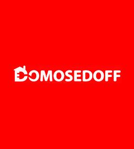 Логотип Domosedoff