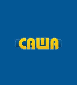 Логотип Саша