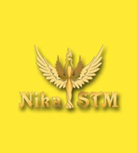 Логотип Ника СТМ