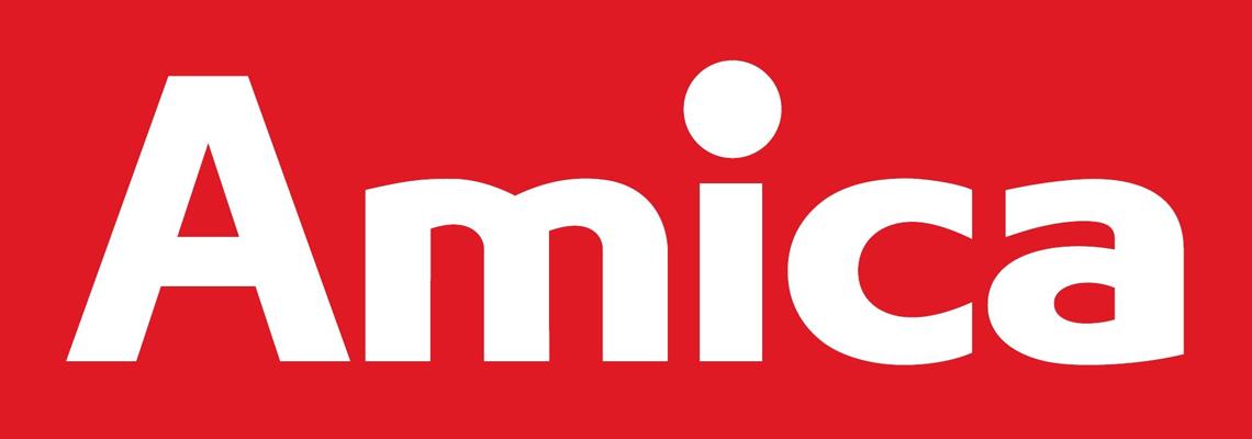 Группа компаний Amica Group