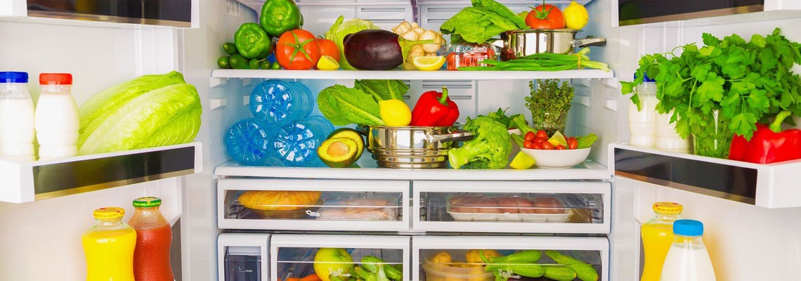 Холодильники SCANDILUX